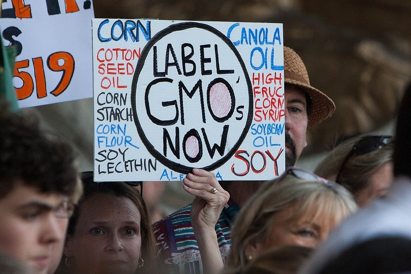 Mo' GMOs, Mo' Problems: Reasons to Be Cautious of Genetically Modified Food