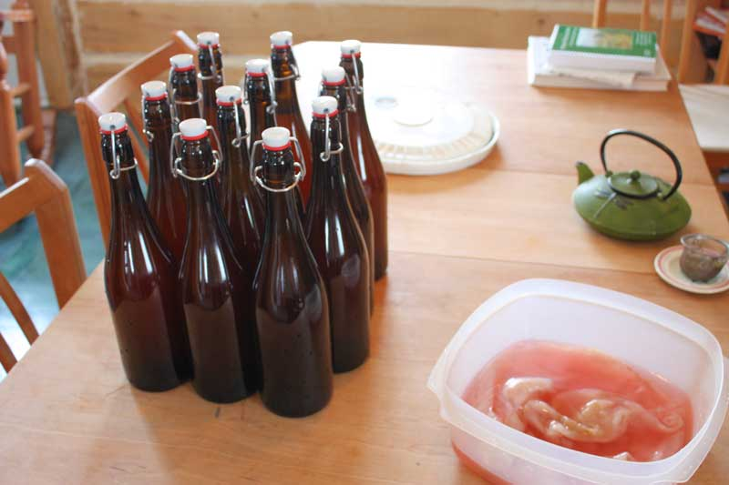 bottled-kombucha-6785622636_f256206943_o