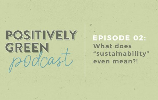 "[Podcast Episode 02] What Does ""Sustainability"" Even Mean?!"