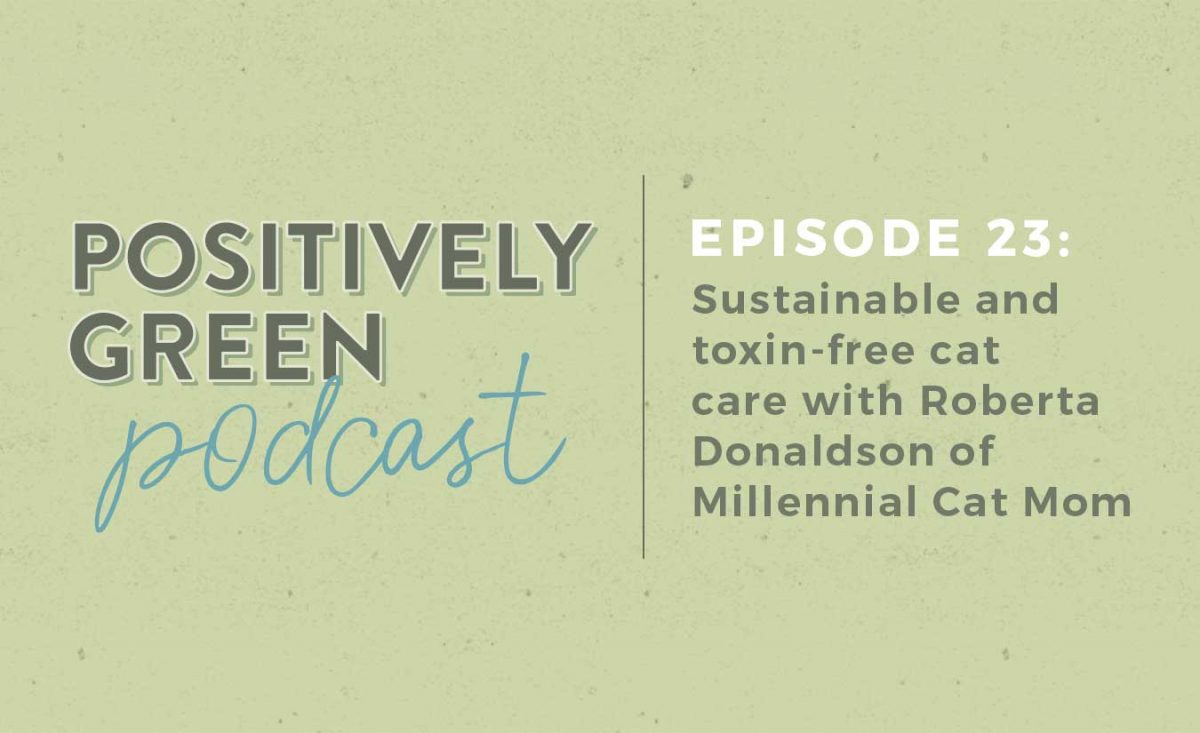 [Podcast Episode 23] Roberta Donaldson of Millennial Cat Mom