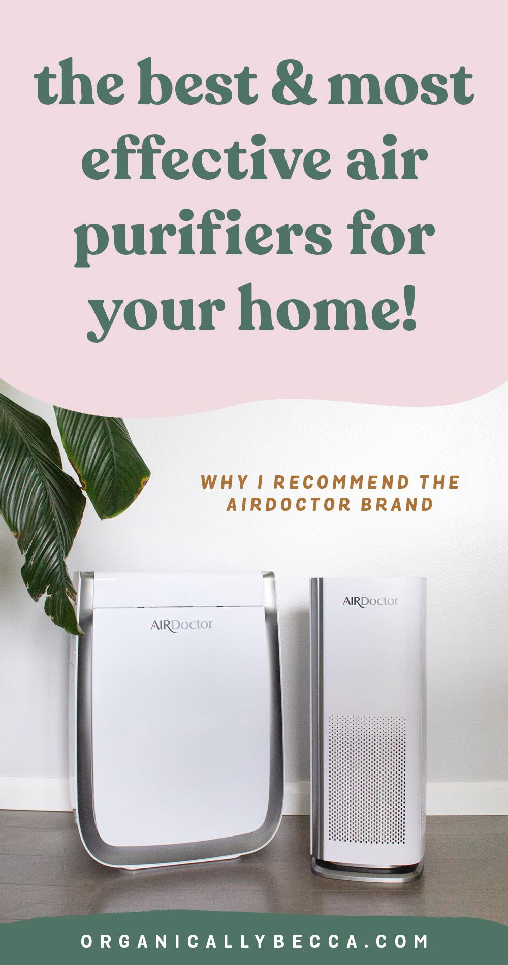 How I Keep My Indoor Air Clean: AirDoctor Purifier Review